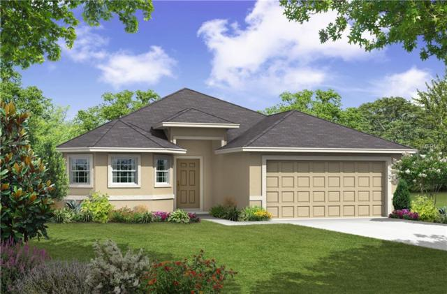189 Lake Mariana Place, Auburndale, FL 33823 (MLS #R4901699) :: Welcome Home Florida Team