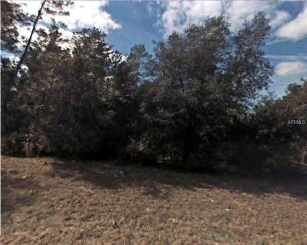 Sw 162Nd Loop, Ocala, FL 34473 (MLS #R4901736) :: The Duncan Duo Team
