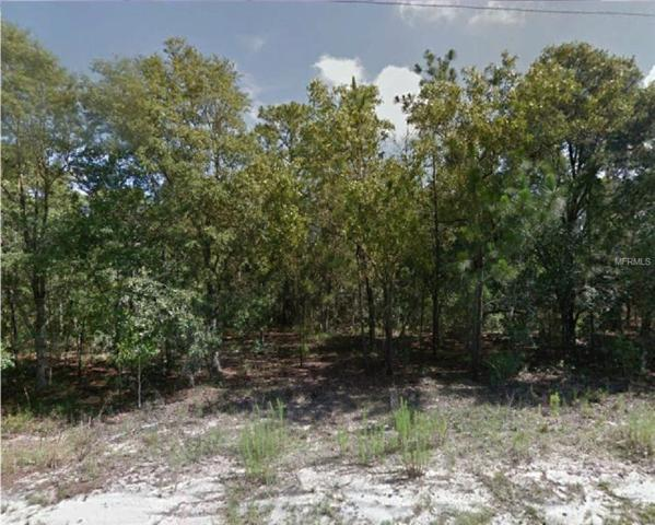 1939 W Redding Street, Hernando, FL 34442 (MLS #R4901777) :: Cartwright Realty