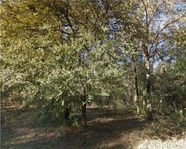 Ne 155Th Terrace, Williston, FL 32696 (MLS #R4901780) :: Cartwright Realty