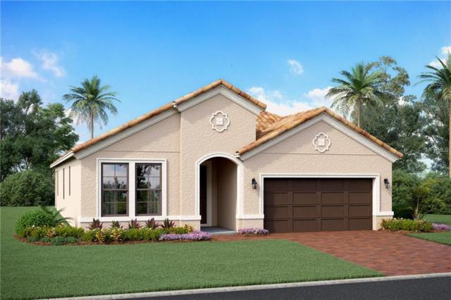 2732 62ND Avenue E, Ellenton, FL 34222 (MLS #R4901816) :: Medway Realty
