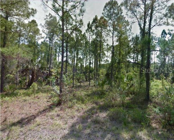 Sernice Street, North Port, FL 34288 (MLS #R4901861) :: Cartwright Realty