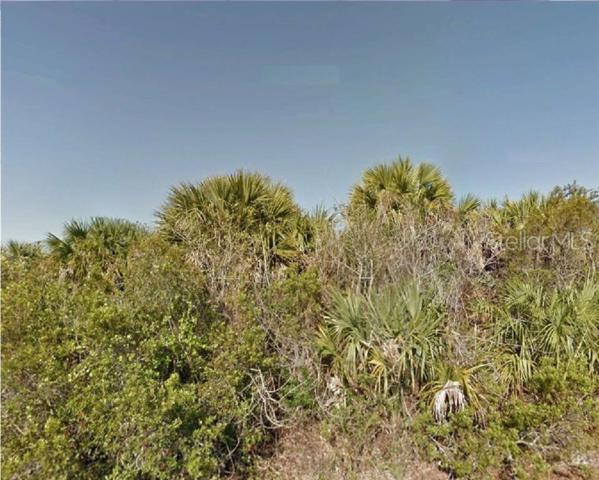 3390 Hummingbird Avenue SW, Palm Bay, FL 32908 (MLS #R4901876) :: Griffin Group