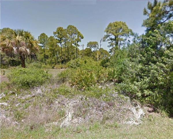 12118 Hunter Avenue, Port Charlotte, FL 33953 (MLS #R4901939) :: Mark and Joni Coulter   Better Homes and Gardens