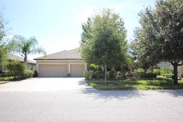Address Not Published, Riverview, FL 33569 (MLS #R4901983) :: Pristine Properties