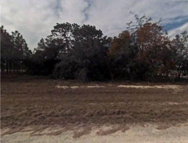 Malauka, Ocklawaha, FL 32179 (MLS #R4902005) :: Cartwright Realty