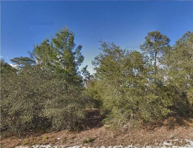 Malauka Pass Lane, Ocklawaha, FL 32179 (MLS #R4902019) :: Cartwright Realty