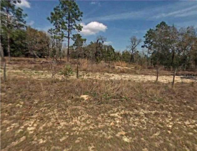 SW 80TH Place, Dunnellon, FL 34431 (MLS #R4902096) :: Ideal Florida Real Estate