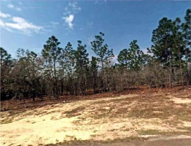 6580 N Killinger Terrace, Citrus Springs, FL 34433 (MLS #R4902097) :: Cartwright Realty