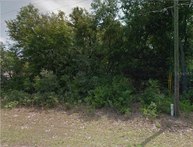 10567 N Skylark Terrace, Citrus Springs, FL 34434 (MLS #R4902098) :: Cartwright Realty