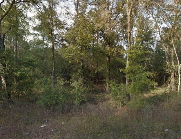 NE 67TH, Bronson, FL 32621 (MLS #R4902159) :: Cartwright Realty