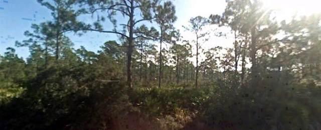 1078 Pearl Terrace, Sebring, FL 33875 (MLS #R4902196) :: Team Bohannon Keller Williams, Tampa Properties