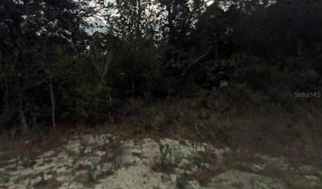 255 Swift Avenue, Sebring, FL 33872 (MLS #R4902202) :: Florida Real Estate Sellers at Keller Williams Realty