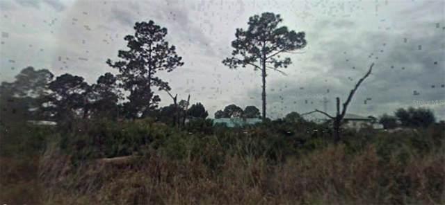 1807 Puffin Street, Sebring, FL 33872 (MLS #R4902203) :: Florida Real Estate Sellers at Keller Williams Realty