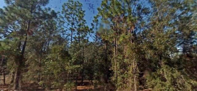 Jefferson Drive, Hawthorne, FL 32640 (MLS #R4902205) :: Cartwright Realty