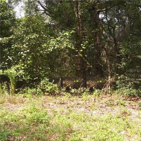 6929 N Deer Point, Citrus Springs, FL 34433 (MLS #R4902224) :: Ideal Florida Real Estate