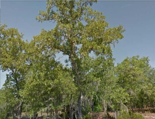 1043 W Ludlum Street, Citrus Springs, FL 34434 (MLS #R4902227) :: Ideal Florida Real Estate