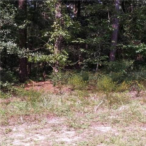 10033 N Darwin Way, Citrus Springs, FL 34434 (MLS #R4902229) :: Ideal Florida Real Estate