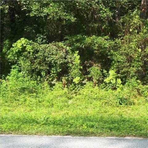 9309 N Alpinia Drive, Citrus Springs, FL 34434 (MLS #R4902235) :: Homepride Realty Services