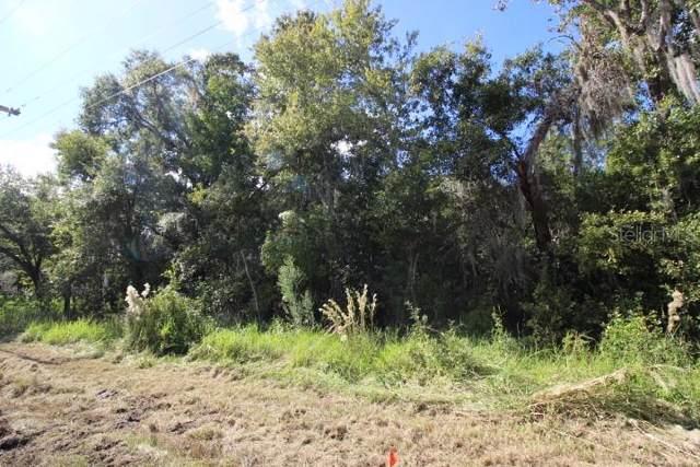 11503 Donneymo0r Drive, Riverview, FL 33569 (MLS #R4902503) :: Griffin Group