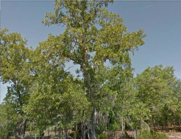 12TH Street, Interlachen, FL 32148 (MLS #R4902507) :: Cartwright Realty