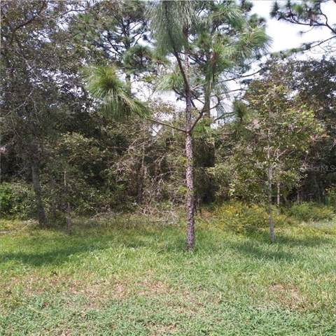 Lapidus Road, North Port, FL 34291 (MLS #R4902534) :: Homepride Realty Services