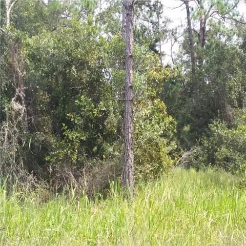 Hornbuckle Boulevard, North Port, FL 34291 (MLS #R4902535) :: The Heidi Schrock Team