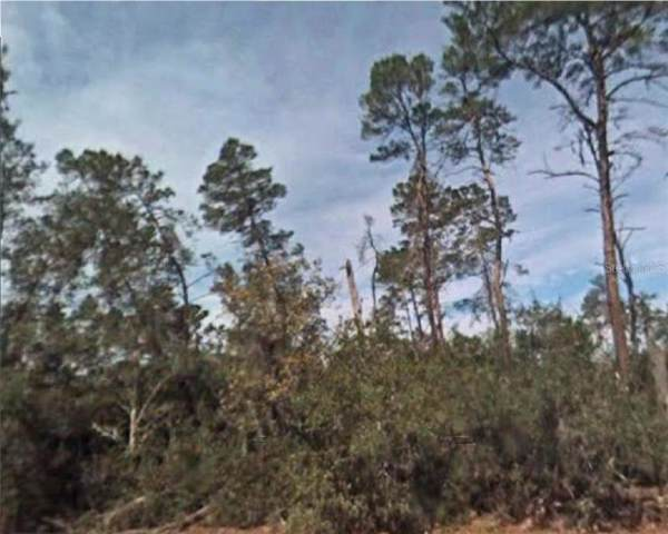 SW Huckle Berry Lane, Dunnellon, FL 34431 (MLS #R4902578) :: GO Realty