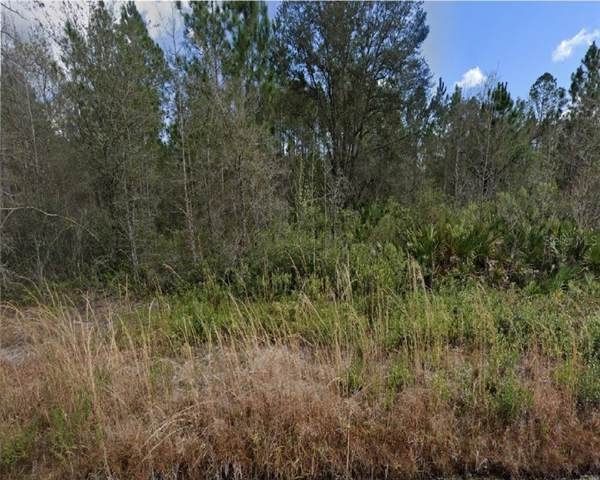 Yeager Avenue, Bunnell, FL 32110 (MLS #R4902841) :: The Figueroa Team
