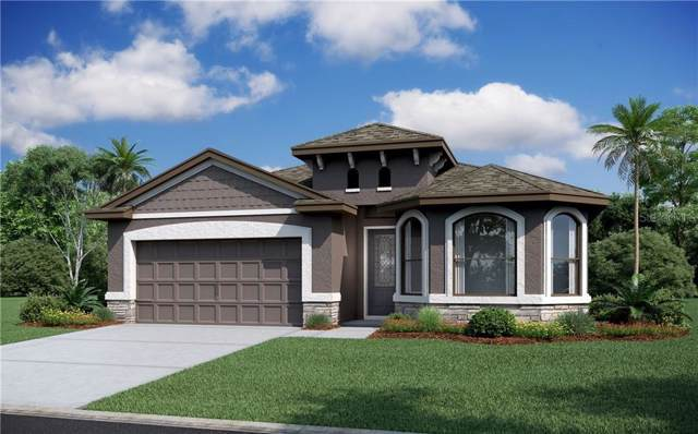 12403 Sourwood Way, New Port Richey, FL 34654 (MLS #R4902918) :: Burwell Real Estate