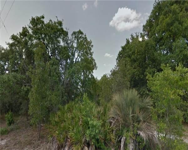 Dorsey Drive, New Port Richey, FL 34654 (MLS #R4903029) :: Keller Williams on the Water/Sarasota