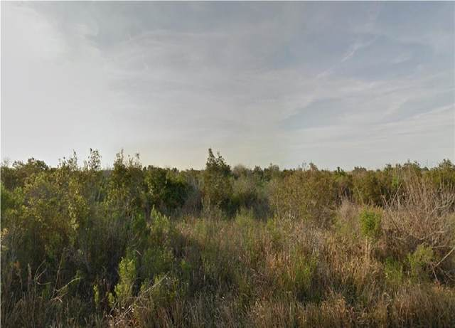 981 Laika Road SW, Palm Bay, FL 32908 (MLS #R4903108) :: Rabell Realty Group