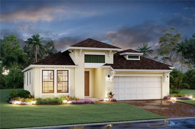 14620 20TH Street E, Parrish, FL 34219 (MLS #R4903141) :: Pristine Properties