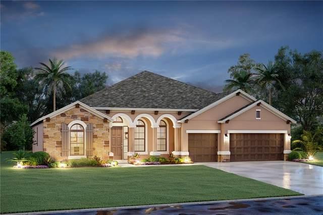 14808 19TH Cove E, Parrish, FL 34219 (MLS #R4903142) :: Pristine Properties