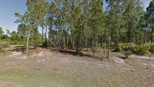 Lace Court, North Port, FL 34288 (MLS #R4903327) :: Team Bohannon Keller Williams, Tampa Properties