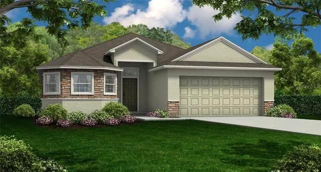 115 Kissengen Park Boulevard, Bartow, FL 33830 (MLS #R4903338) :: Griffin Group