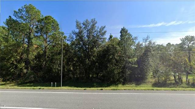 7368 Treiman Boulevard, Webster, FL 33597 (MLS #R4903359) :: KELLER WILLIAMS ELITE PARTNERS IV REALTY