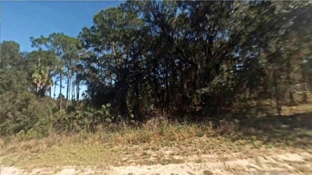 1028 Redbird Street, Lake Placid, FL 33852 (MLS #R4903366) :: Baird Realty Group