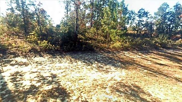 Vistula Drive, Chipley, FL 32428 (MLS #R4903492) :: Southern Associates Realty LLC