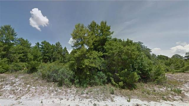 13328 Lynwood Street, Sebring, FL 33875 (MLS #R4903668) :: The Lersch Group