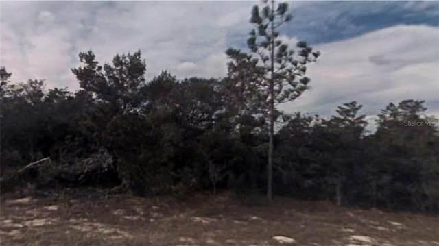 Fisher Way Terrace, Ocklawaha, FL 32179 (MLS #R4903670) :: Griffin Group