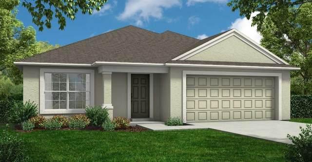 1823 Creeks Vista Boulevard, Lakeland, FL 33810 (MLS #R4903839) :: Pepine Realty