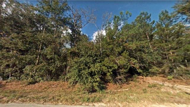 NE 227TH Street, Fort Mc Coy, FL 32134 (MLS #R4903906) :: Bustamante Real Estate