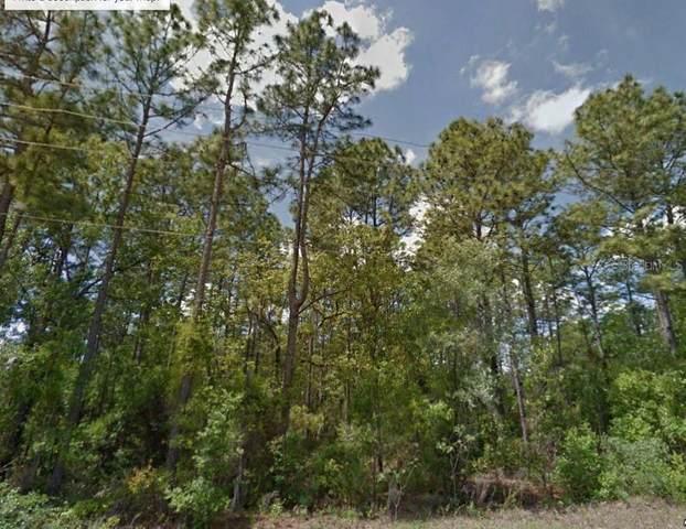 SW 80TH Avenue, Ocala, FL 34473 (MLS #R4903952) :: Premier Home Experts