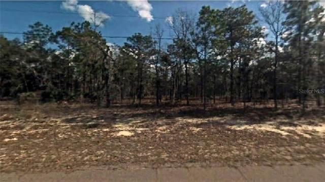9587 N Wayland Avenue, Citrus Springs, FL 34434 (MLS #R4903953) :: Premier Home Experts