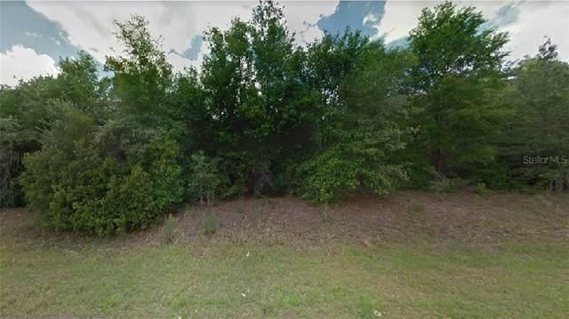 10648 N Adler Drive, Citrus Springs, FL 34434 (MLS #R4903959) :: Delgado Home Team at Keller Williams