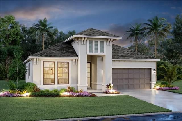 14612 20TH Street E, Parrish, FL 34219 (MLS #R4904005) :: Sarasota Home Specialists