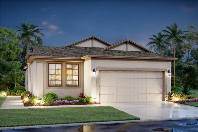 11366 Daybreak Glen, Parrish, FL 34219 (MLS #R4904007) :: U.S. INVEST INTERNATIONAL LLC