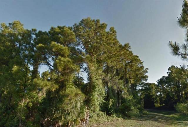 Lutz Road, North Port, FL 34286 (MLS #R4904059) :: Bob Paulson with Vylla Home