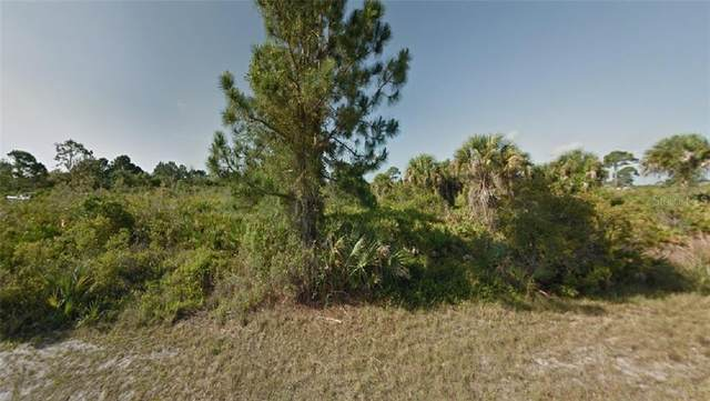 12181 Mcelroy Avenue, Port Charlotte, FL 33981 (MLS #R4904260) :: Visionary Properties Inc